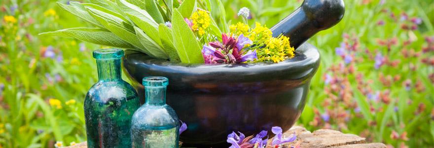Medecine naturelle soigner avec les plantes medicinales