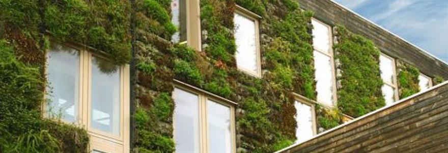 mur végétal stabilisé